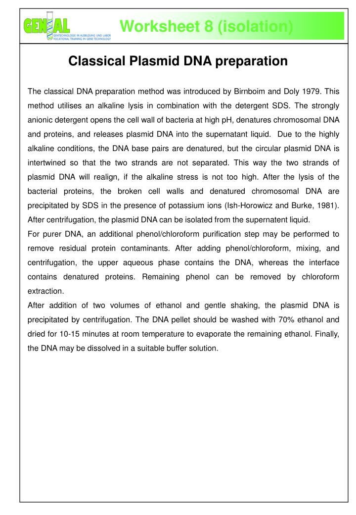 Classical plasmid dna preparation