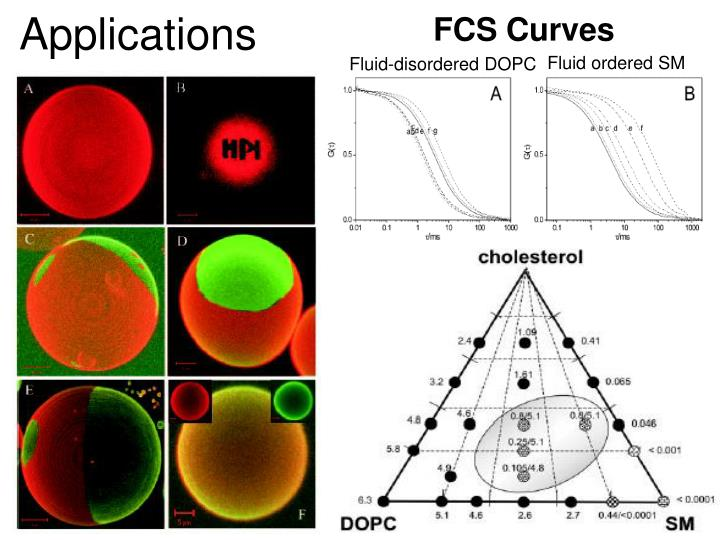 FCS Curves