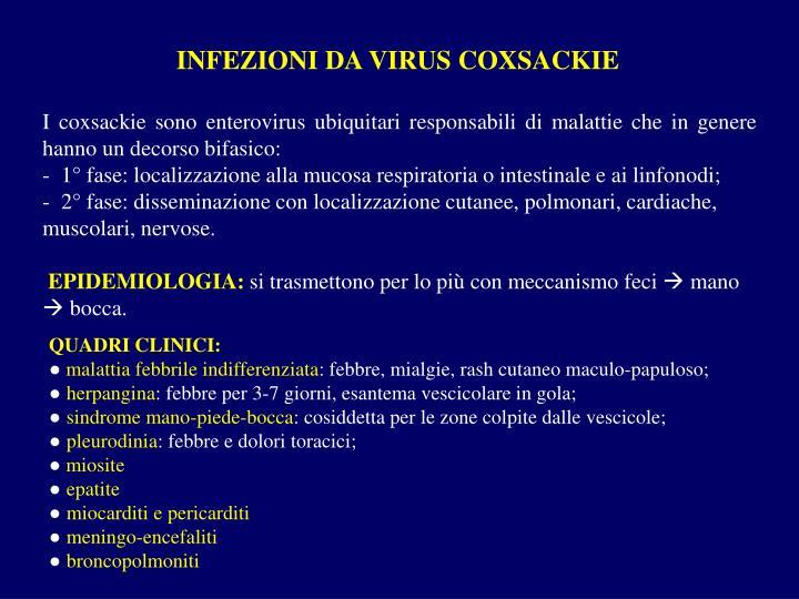 INFEZIONI DA VIRUS COXSACKIE