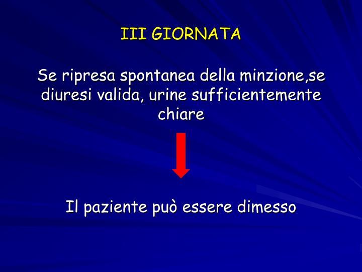 III GIORNATA