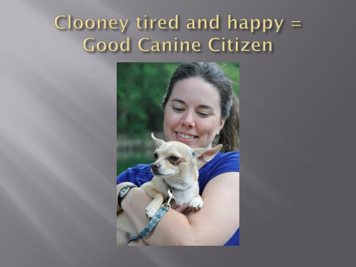 Clooney tired and happy =