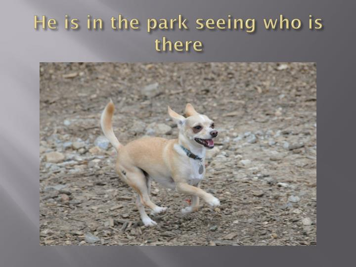 He is in the park seeing who is there