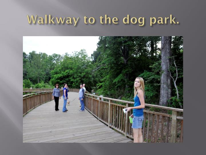 Walkway to the dog park.