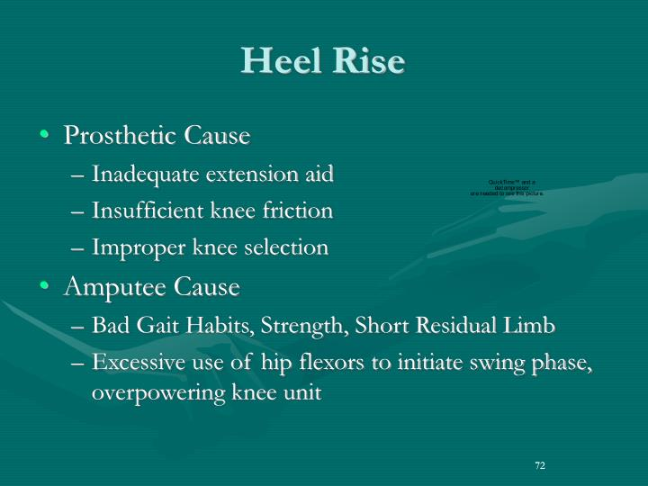 Heel Rise