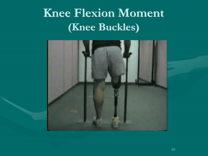 Knee Flexion Moment