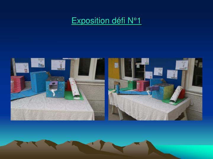 Exposition défi N°1