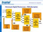hierarquia digital plesi crona pdh europ ia
