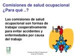 comisiones de salud ocupacional para qu1
