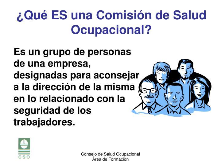 Es un grupo de personas de una empresa, designadas para aconsejar a la dirección de la misma en lo relacionado con la seguridad de los trabajadores.