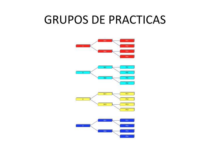 GRUPOS DE PRACTICAS