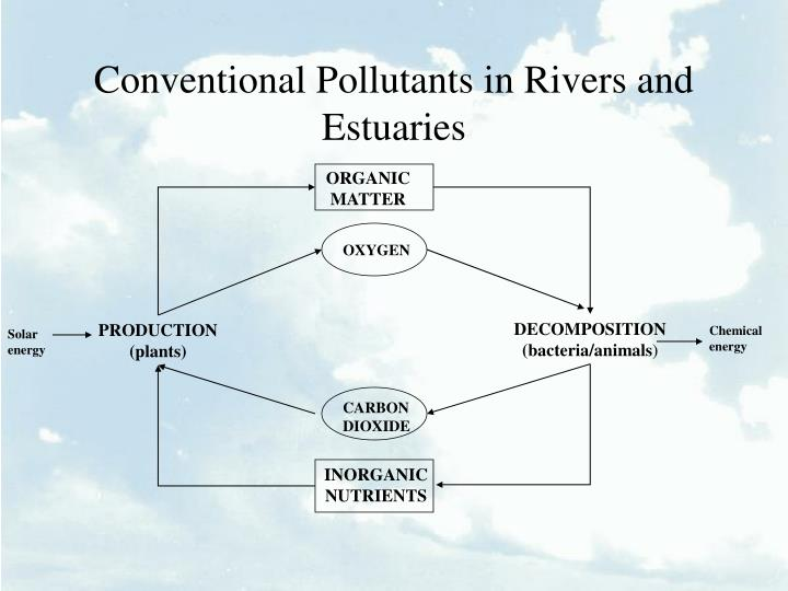 Conventional pollutants in rivers and estuaries