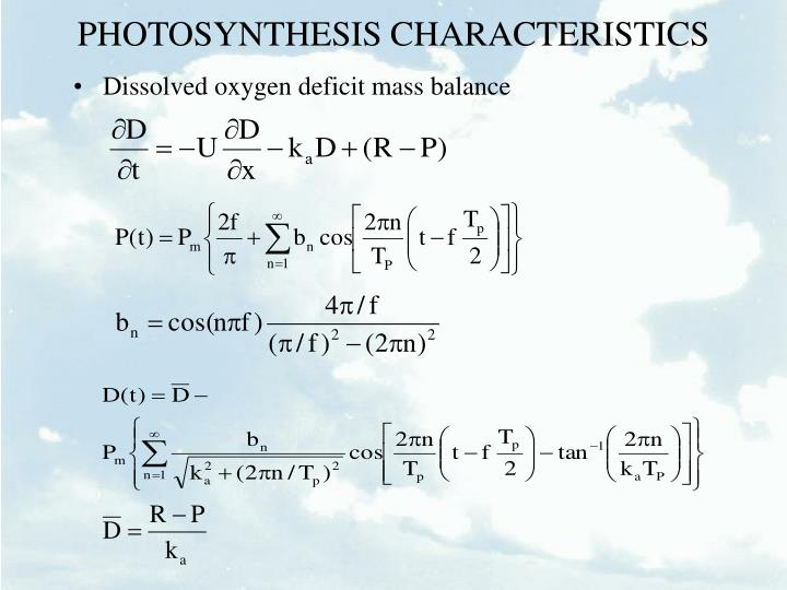 PHOTOSYNTHESIS CHARACTERISTICS