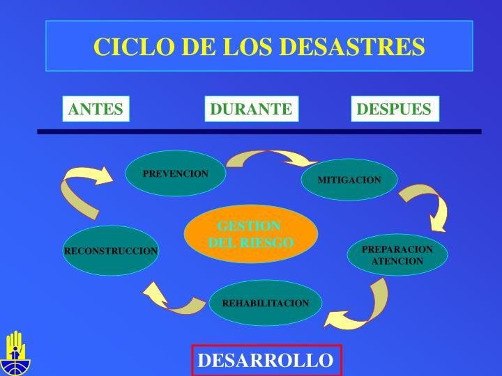 CICLO DE LOS DESASTRES