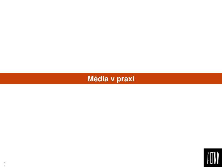 Média v praxi