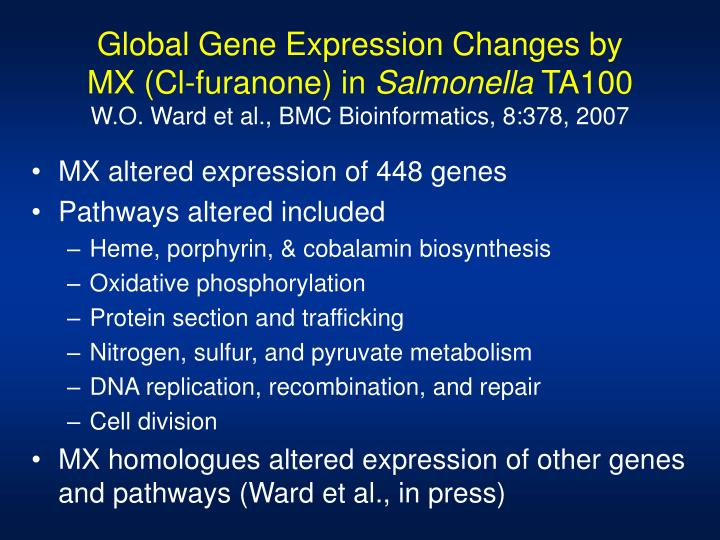 Global Gene Expression Changes by