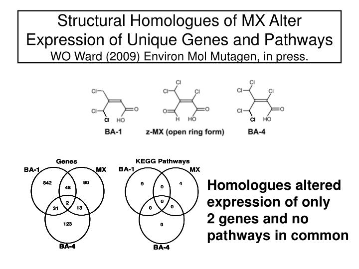 Structural Homologues of MX Alter Expression of Unique Genes and Pathways