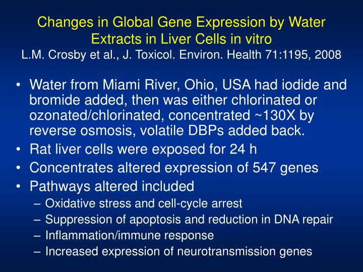 Changes in Global Gene Expression by Water Extracts in Liver Cells in vitro