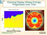 evolving display shows entropy progression over time