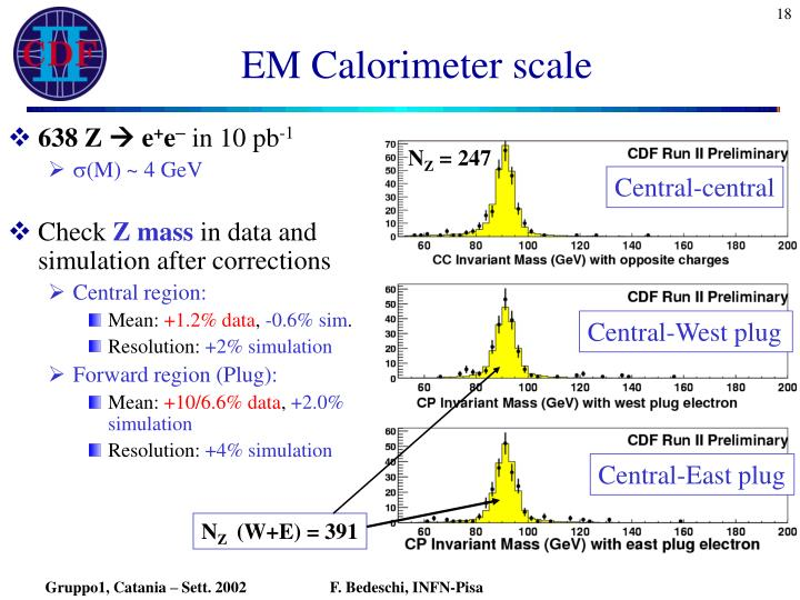 EM Calorimeter scale