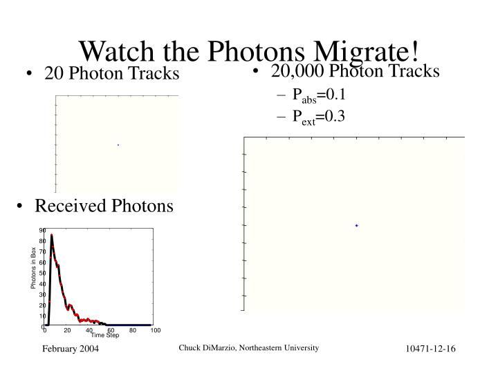 20 Photon Tracks