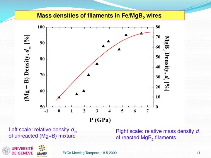 Mass densities of filaments in Fe/MgB