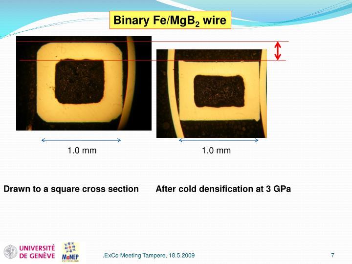Binary Fe/MgB