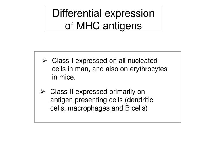 Differential expression of MHC antigens