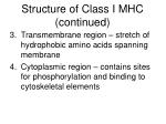 structure of class i mhc continued