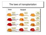 the laws of transplantation