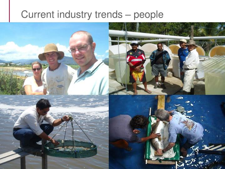 Current industry trends – people