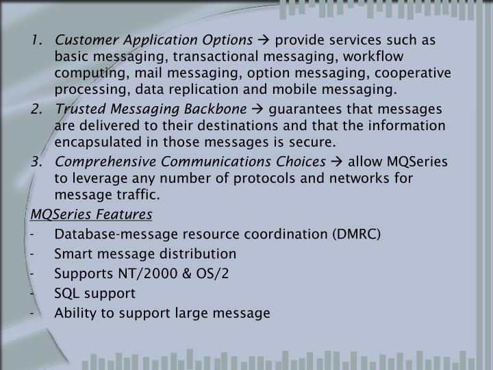 Customer Application Options