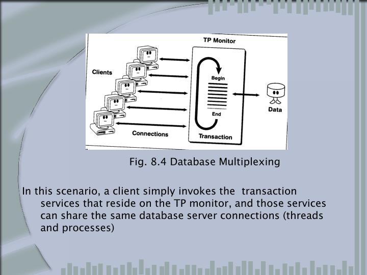 Fig. 8.4 Database Multiplexing