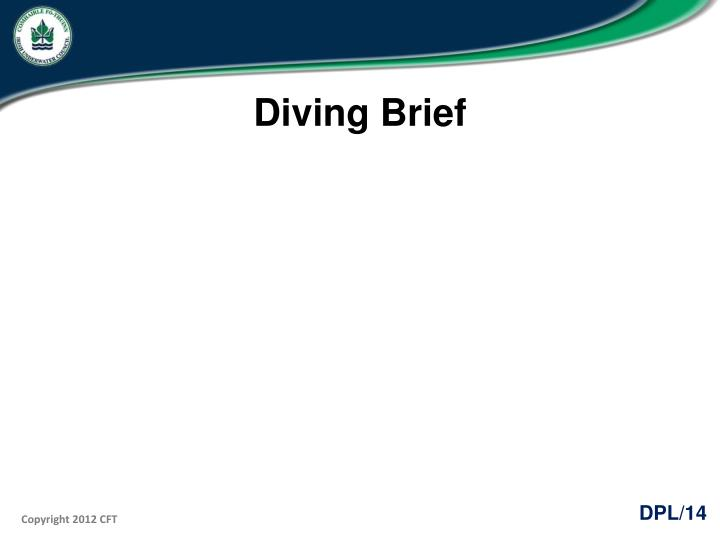Diving Brief