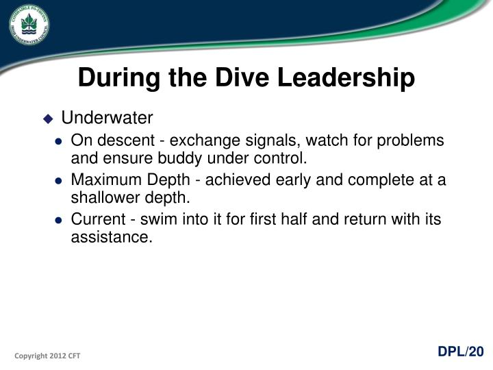 During the Dive Leadership