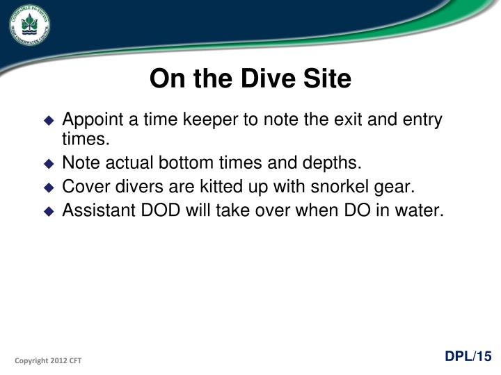 On the Dive Site