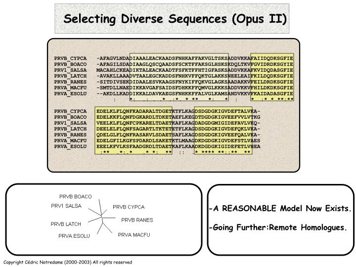 Selecting Diverse Sequences (Opus II)