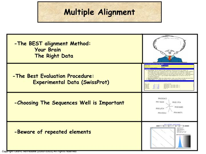 -The BEST alignment Method:
