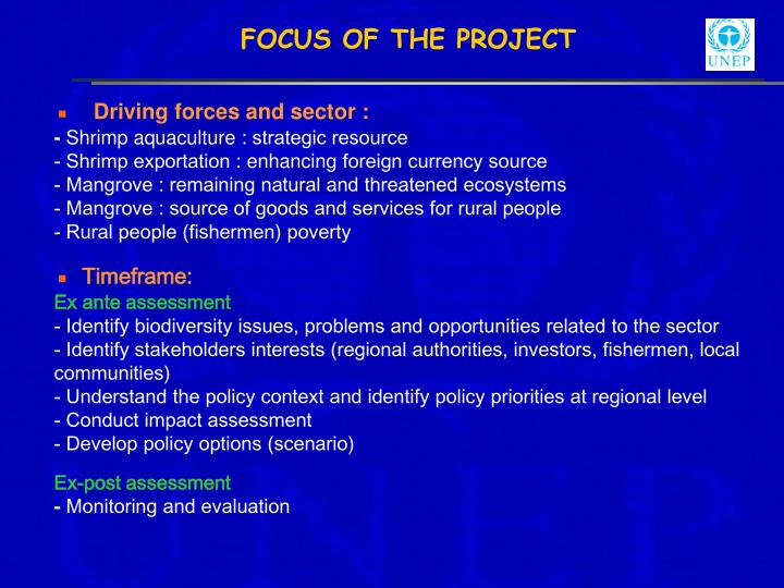 FOCUS OF THE PROJECT