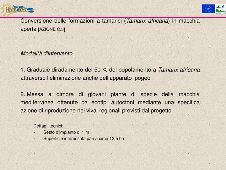 Conversione delle formazioni a tamarici (