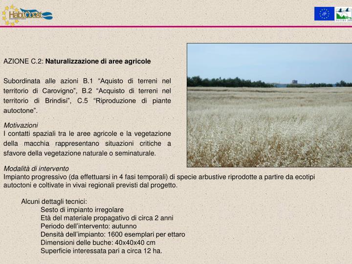 AZIONE C.2: