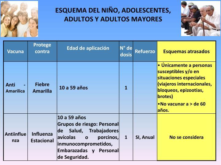ESQUEMA DEL NIÑO, ADOLESCENTES,