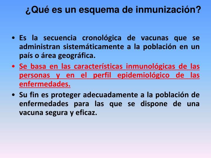 ¿Qué es un esquema de inmunización?