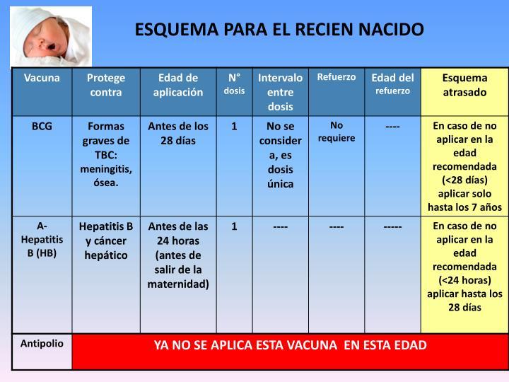 ESQUEMA PARA EL RECIEN NACIDO