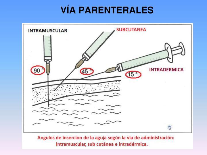 VÍA PARENTERALES