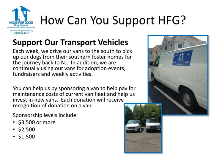 How Can You Support HFG?