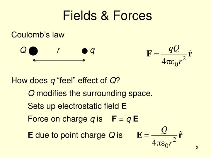 Fields & Forces