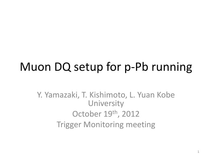 Muon dq setup for p pb running