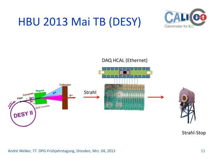 HBU 2013 Mai TB (DESY)
