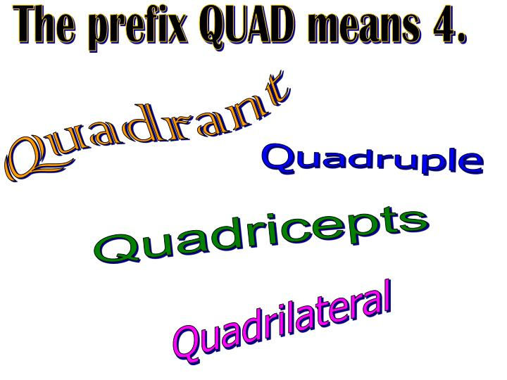 The prefix QUAD means 4.
