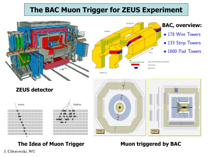The BAC Muon Trigger for ZEUS Experiment